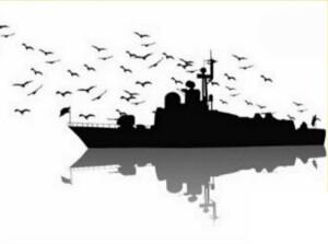 پیام تسلیت خانواده شنا در پی شهادت دریانوردان ارتش جمهوری اسلامی