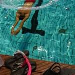 تمرینات ملی پوشان شنا عصر امروز(شنبه) در استخر قهرمانی مجموعه ورزشی آزادی با رعایت پروتکل های بهداشتی آغاز شد.