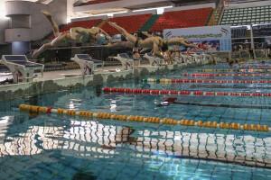 دور جدید اردوی تیم ملی با اضافه شدن سه شناگر در تهران