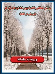 راه اندازی سامانه همگانی فدراسیون شنا شیرجه واترپلوی جمهوری اسلامی ایران