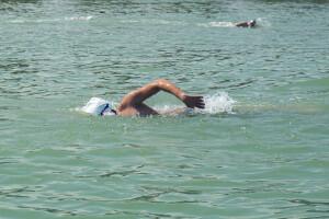 نتایج مسابقات شنا آب های آزاد  جام بزرگسالان